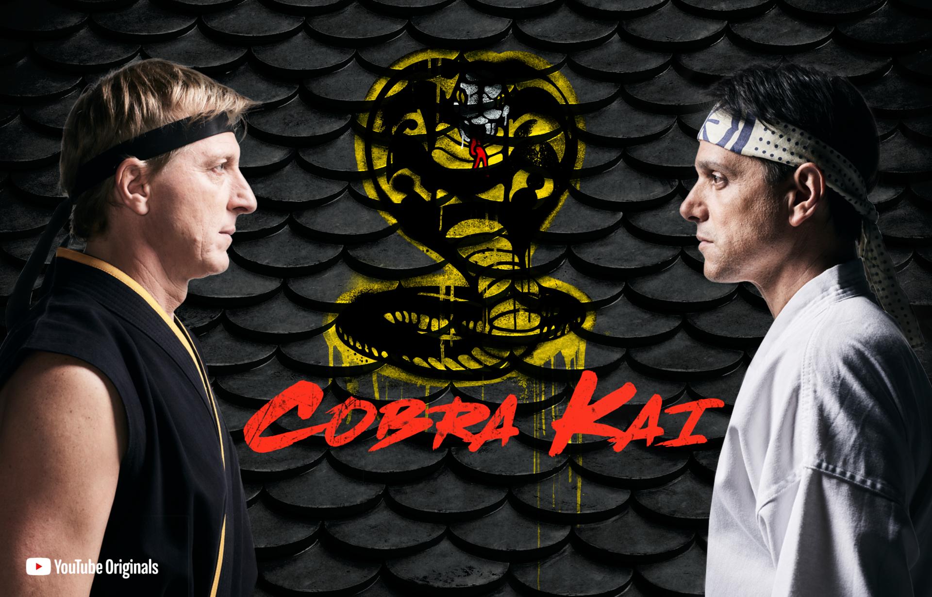 No enseñes kárate a tus niños: Cobra Kai – BRAINSTOMPING